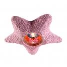 NOVOTECH 369580 Встраиваемый светильник неповоротный SANDSTONE 1x50W GX5.3 розовый песчаник IP20