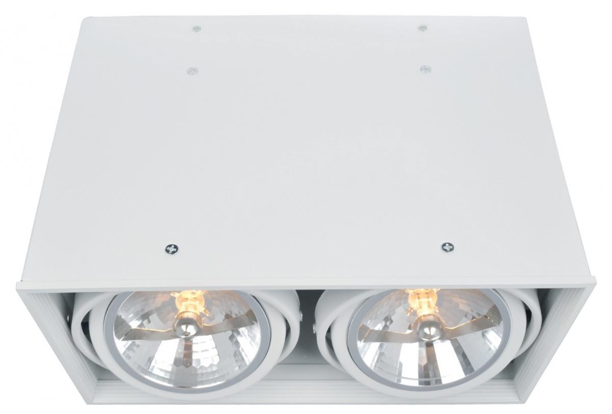 A5936PL-2WH Накладной светильник CARDANI 2x50W, 2xG5,3 Arte Lamp