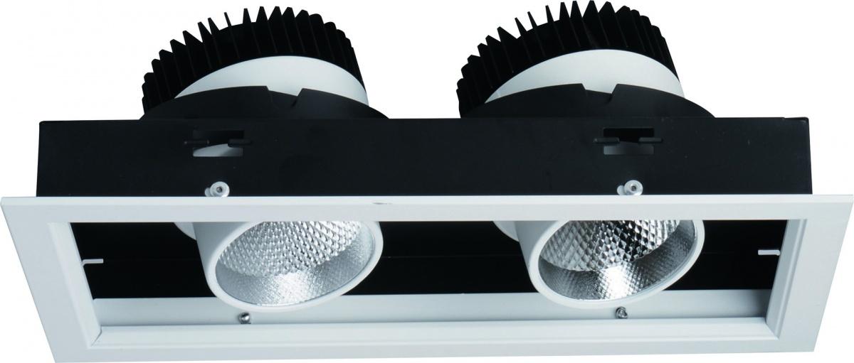 A1712PL-2WH Встраиваемый светильник CARDANI 2x12W, 2xLED Arte Lamp