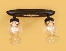 CITILUX CL413121 Потолочный светильник МЕТАФОРА 2x60W E14 кофейный