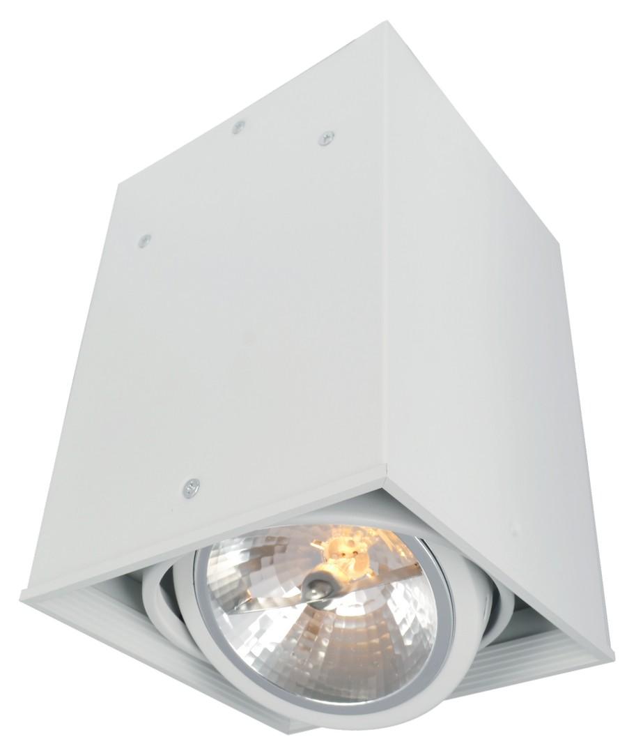 A5936PL-1WH Накладной светильник CARDANI 1x50W, 1xG5,3 Arte Lamp