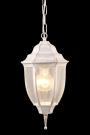 A3151SO-1WG Уличный подвесной светильник PEGASUS 1x60W, 1xE27 Arte Lamp