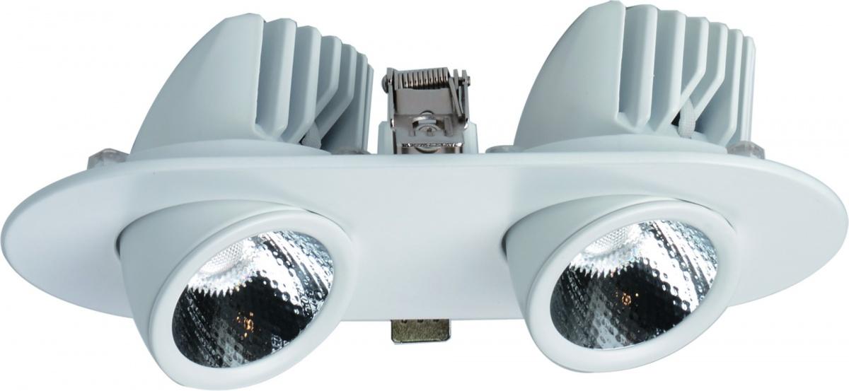 A1212PL-2WH Встраиваемый светильник CARDANI 2x12W, 2xLED Arte Lamp