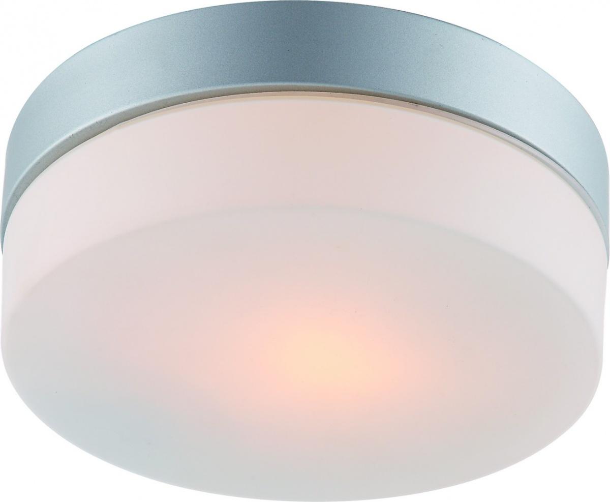A3211PL-1SI Настенно-потолочный светильник AQUA 1x60W, 1xE27 Arte Lamp